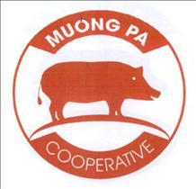 MUONG PA COOPERPATIVE, hình