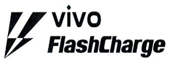 VIVO FlashCharge, hình
